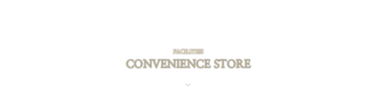 CONVENIENCE-STORE